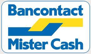 Betalen met Maestro